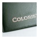 Barva COLORIS 4000 P Metallic zlatá pigmentovaná (23), 50 g